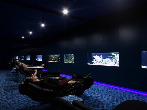 google office zurich aquarium