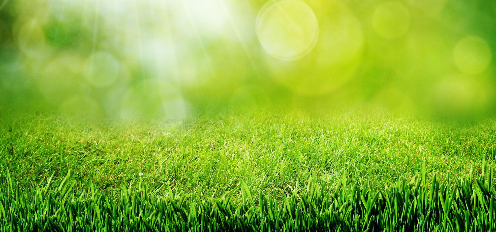 Robot tondeuse tondeuse gazon ou tracteur que choisir for Combien demander pour tondre la pelouse