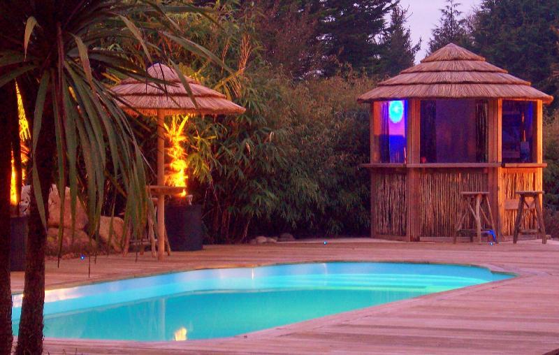 Top 5 d 39 id es exotique pour d corer une piscine en appart for Bar exterieur pour piscine