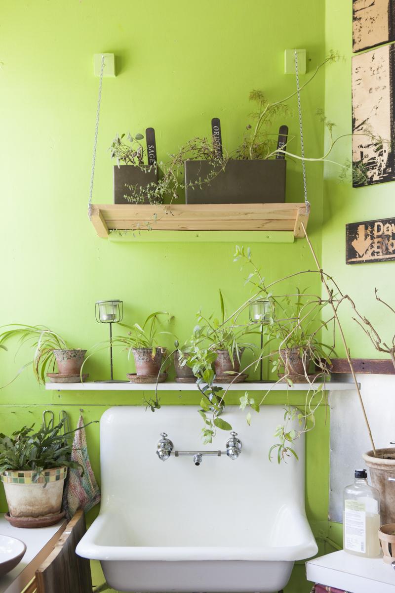 Visite priv e 500 plantes vertes cohabitent dans cet appartement en appart - Plantes de salle de bain ...